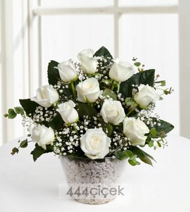 beyazin-buyusu-11-beyaz-gul-523192