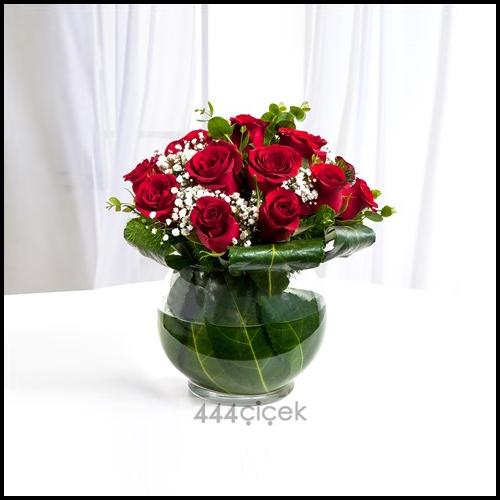 Aşkın Halleri Kırmızı Güller