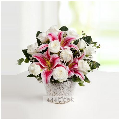 Kalbim Senin Güller ve Lilyumlar